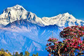 Великие гиганты Непала. Гималаи